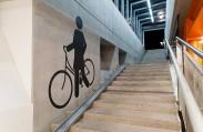 Изображение на лестнице женщины с великом